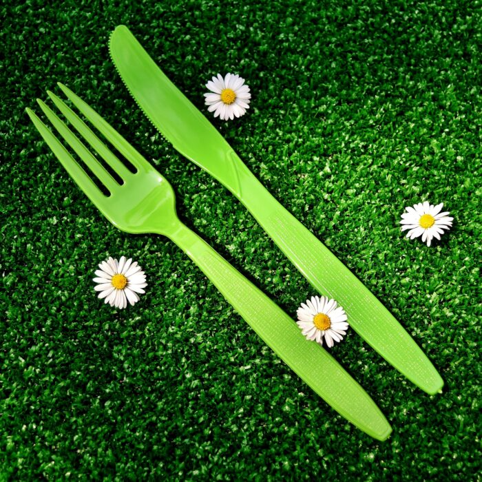 picnic-2402635_1920